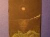 Riflesso di luna con agave