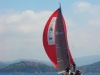 Rosso al vento