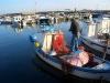 Un lavoro da pescatore
