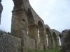 Il Teatro romano di Ferento (VT)