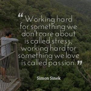 stress-passione